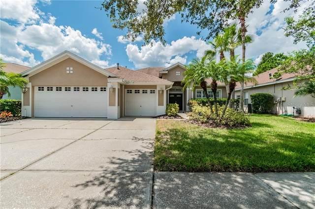 10723 Tavistock Drive, Tampa, FL 33626 (MLS #T3258941) :: Ramos Professionals Group