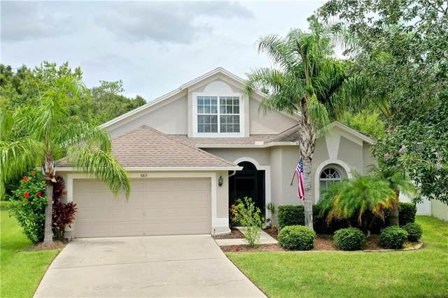 6813 Bluff Meadow Court, Wesley Chapel, FL 33545 (MLS #T3258942) :: Team Borham at Keller Williams Realty