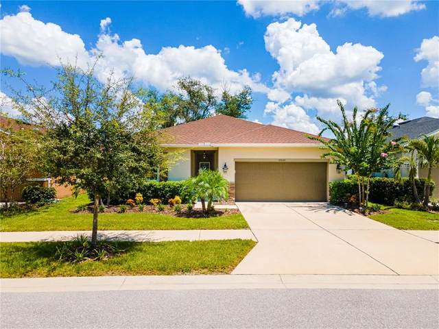 10530 Medford Lake Drive, Riverview, FL 33578 (MLS #T3258962) :: Ramos Professionals Group