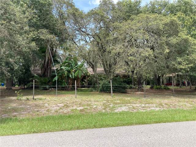 6701 Simmons Loop, Riverview, FL 33578 (MLS #T3258980) :: Ramos Professionals Group