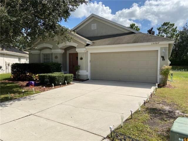 13207 Evening Sunset Lane, Riverview, FL 33579 (MLS #T3258987) :: Premier Home Experts