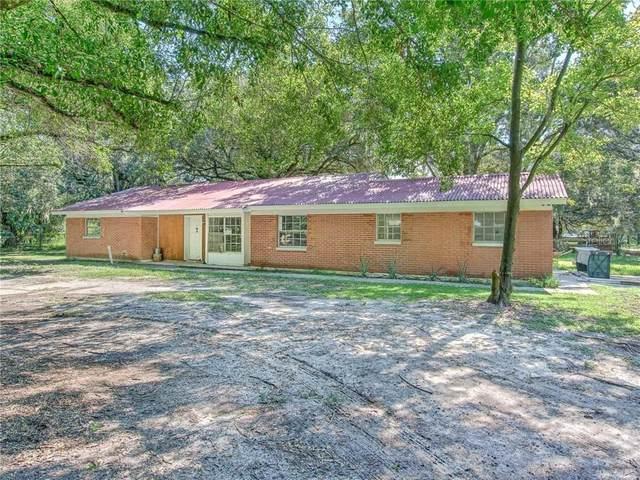 8810 Carey Road, Lithia, FL 33547 (MLS #T3259032) :: Team Bohannon Keller Williams, Tampa Properties