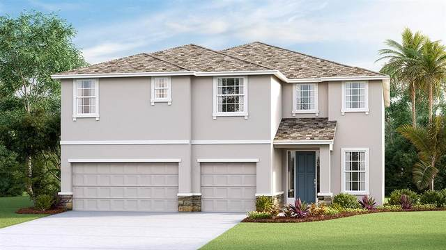 11931 Brighton Knoll Loop, Riverview, FL 33579 (MLS #T3259041) :: Ramos Professionals Group