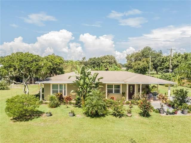 4615 Keene Road, Plant City, FL 33565 (MLS #T3259106) :: Prestige Home Realty