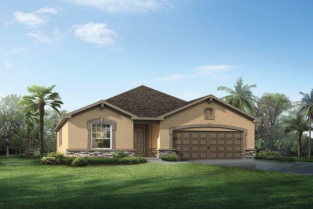 11526 Cedar Valley Drive #107, Riverview, FL 33578 (MLS #T3259125) :: Ramos Professionals Group