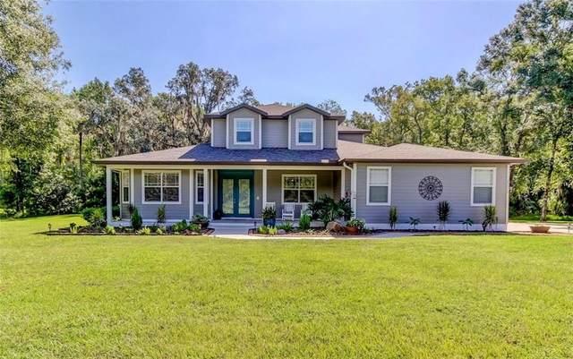 25253 Bunting Circle, Land O Lakes, FL 34639 (MLS #T3259151) :: Cartwright Realty