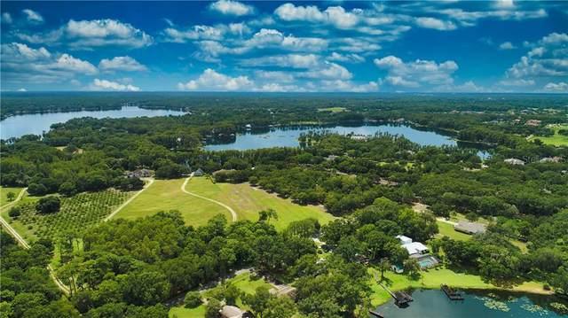 18026 Spencer Road, Odessa, FL 33556 (MLS #T3259165) :: Prestige Home Realty