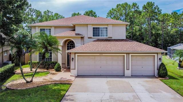 13205 Royal George Avenue, Odessa, FL 33556 (MLS #T3259183) :: Griffin Group