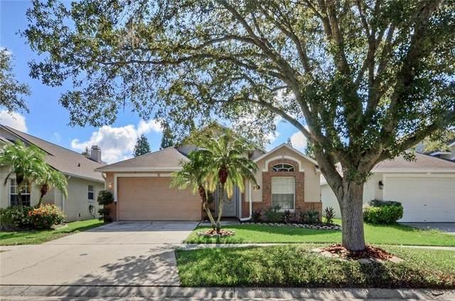 6906 Jamestown Manor Drive, Riverview, FL 33578 (MLS #T3259211) :: Prestige Home Realty