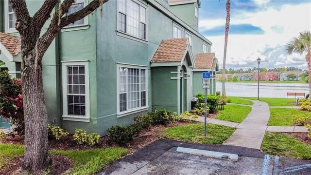9728 Lake Chase Island Way #9728, Tampa, FL 33626 (MLS #T3259233) :: Team Bohannon Keller Williams, Tampa Properties