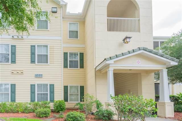 18255 Bridle Club Drive #18255, Tampa, FL 33647 (MLS #T3259238) :: Cartwright Realty