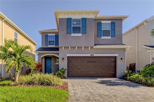 17519 Brighton Lake Road, Land O Lakes, FL 34638 (MLS #T3259250) :: Cartwright Realty