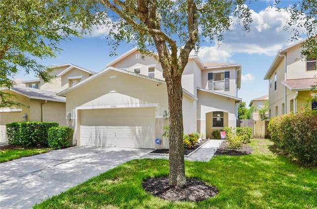 17549 Glenapp Drive, Land O Lakes, FL 34638 (MLS #T3259262) :: Team Bohannon Keller Williams, Tampa Properties