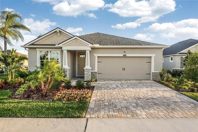 12115 Night Jasmine Cove 11A, Riverview, FL 33579 (MLS #T3259297) :: Pepine Realty