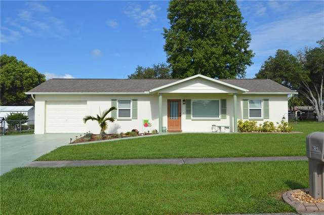 7251 Ashland Drive, Zephyrhills, FL 33540 (MLS #T3259323) :: Heckler Realty