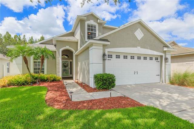 19321 Weedon Court, Land O Lakes, FL 34638 (MLS #T3259340) :: Charles Rutenberg Realty