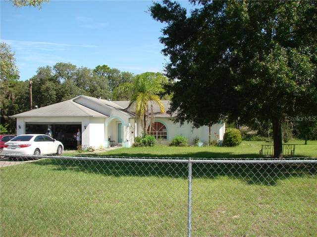 14719 Peace Boulevard, Spring Hill, FL 34610 (MLS #T3259408) :: Griffin Group