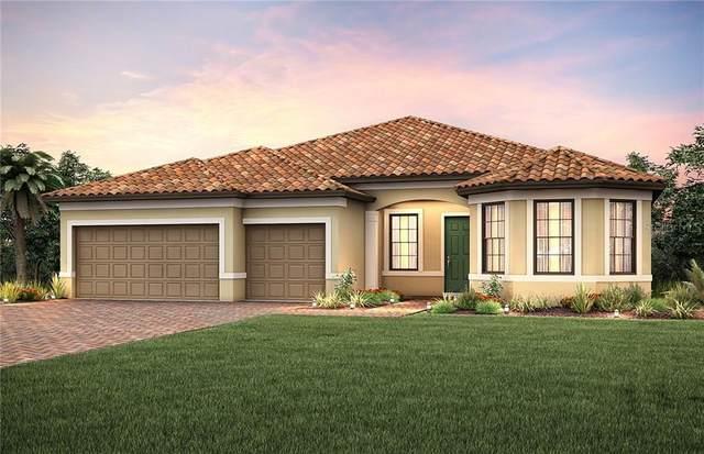 13298 Rinella Street, Venice, FL 34293 (MLS #T3259436) :: Homepride Realty Services