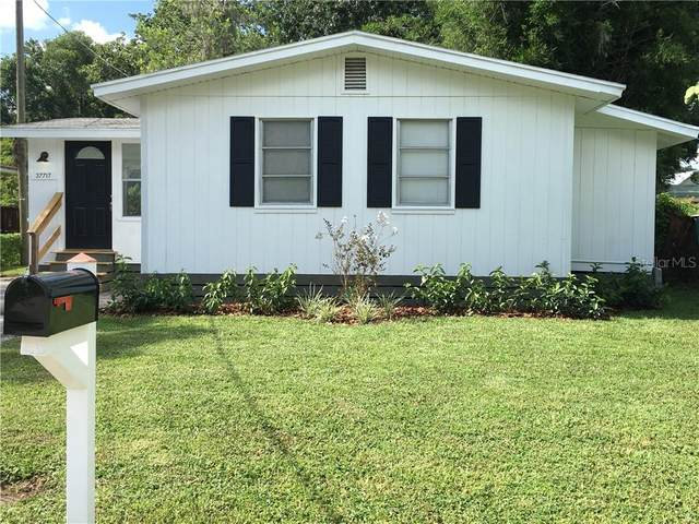 37717 Mcminn Avenue, Dade City, FL 33525 (MLS #T3259458) :: Homepride Realty Services