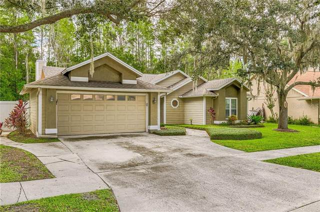 15109 Golden Eagle Way, Tampa, FL 33625 (MLS #T3259461) :: The Figueroa Team