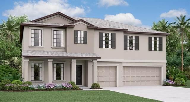 806 Timeless Moss Drive, Ruskin, FL 33570 (MLS #T3259506) :: Team Bohannon Keller Williams, Tampa Properties