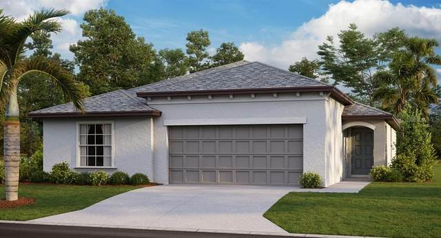 755 Calico Scallop Street, Ruskin, FL 33570 (MLS #T3259513) :: Team Bohannon Keller Williams, Tampa Properties