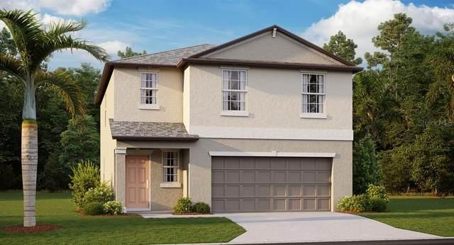 9709 Channiung Hill Drive, Ruskin, FL 33573 (MLS #T3259564) :: Team Bohannon Keller Williams, Tampa Properties
