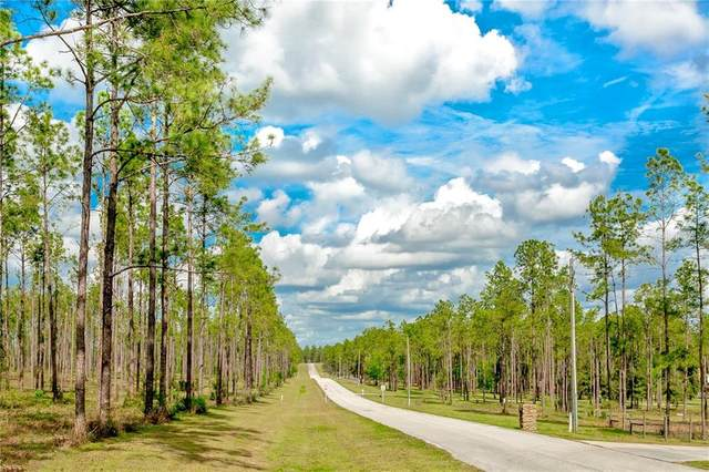 LOT 59 Pony Pond Road, Dade City, FL 33523 (MLS #T3259580) :: Your Florida House Team