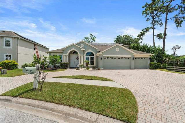 7206 Americus Lane, Land O Lakes, FL 34637 (MLS #T3259591) :: Team Bohannon Keller Williams, Tampa Properties