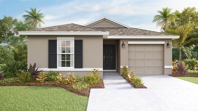 12137 High Rock Way, Parrish, FL 34219 (MLS #T3259628) :: The Figueroa Team