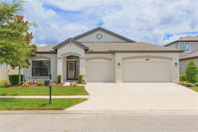 8144 Mallow Mirror Lane, Land O Lakes, FL 34637 (MLS #T3259643) :: Team Bohannon Keller Williams, Tampa Properties