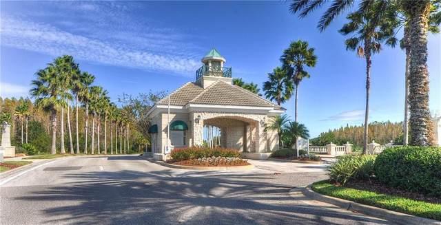 10469 Lucaya Drive, Tampa, FL 33647 (MLS #T3259700) :: Team Bohannon Keller Williams, Tampa Properties