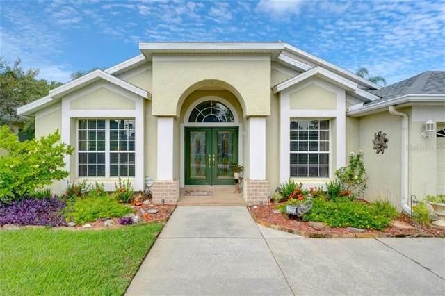 15823 Berea Drive, Odessa, FL 33556 (MLS #T3259739) :: Pristine Properties