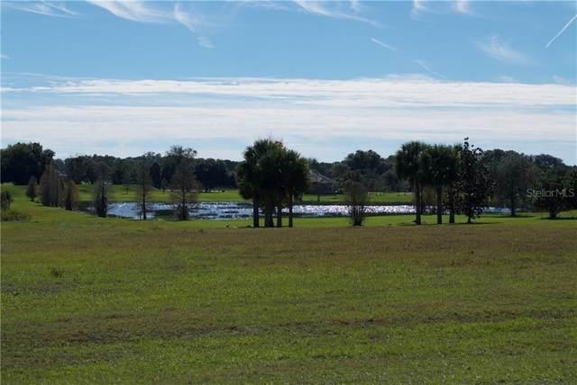 10633 Broadland Pass, Thonotosassa, FL 33592 (MLS #T3260466) :: Rabell Realty Group