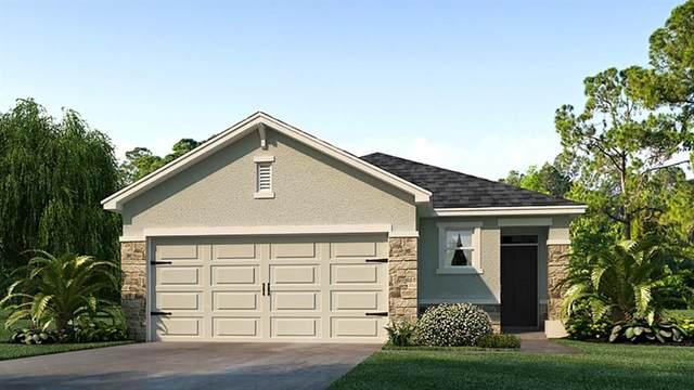 5863 Elegant Orchid Way, Sarasota, FL 34232 (MLS #T3260491) :: Premier Home Experts