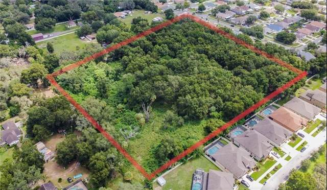 5524 Patterson Road, Riverview, FL 33578 (MLS #T3260703) :: Team Bohannon Keller Williams, Tampa Properties