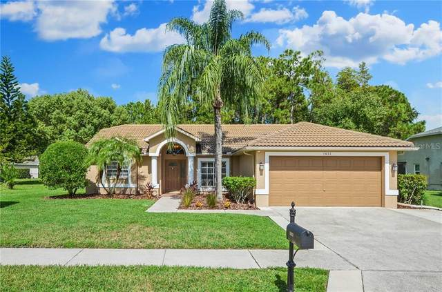 1431 Kinsmere Drive, Trinity, FL 34655 (MLS #T3260731) :: Griffin Group