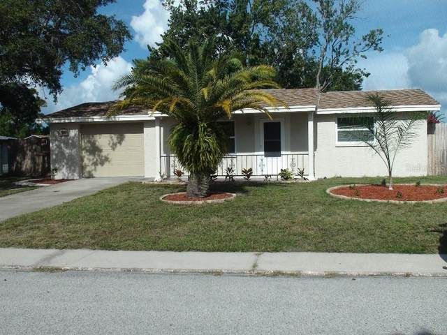 9805 Wayside Lane, Port Richey, FL 34668 (MLS #T3260846) :: Carmena and Associates Realty Group