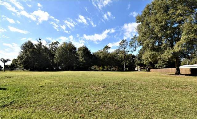 11531 Pine Hollow Way, Dade City, FL 33525 (MLS #T3260894) :: Rabell Realty Group