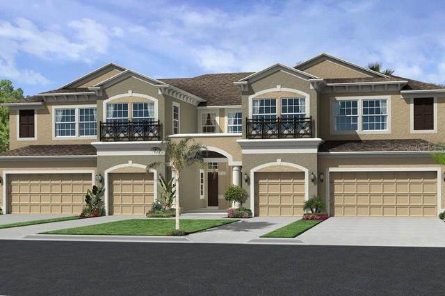 30150 Southwell Lane, Wesley Chapel, FL 33543 (MLS #T3261114) :: The Duncan Duo Team