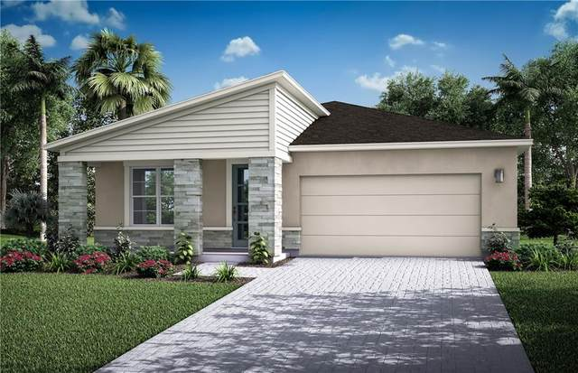 2364 Arbor Wind Drive 10/10, Lutz, FL 33558 (MLS #T3261735) :: Burwell Real Estate