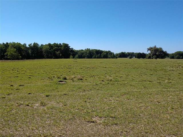 Ponce De Leon Boulevard, Brooksville, FL 34614 (MLS #T3261740) :: Pepine Realty