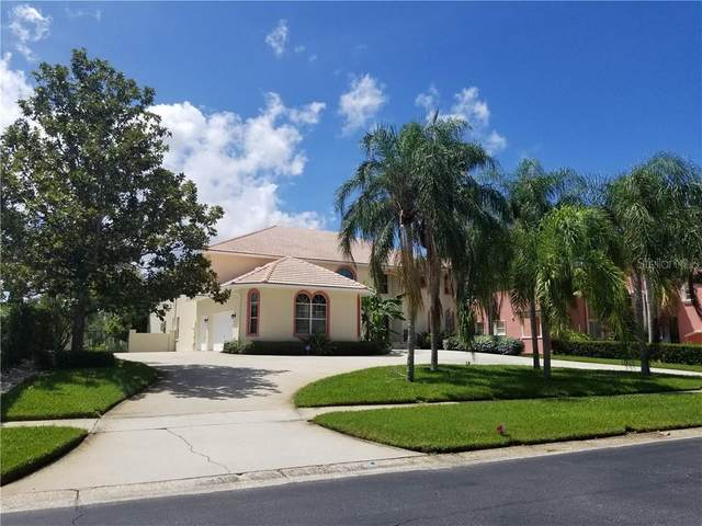 7302 Pelican Island Drive, Tampa, FL 33634 (MLS #T3261871) :: Team Bohannon Keller Williams, Tampa Properties