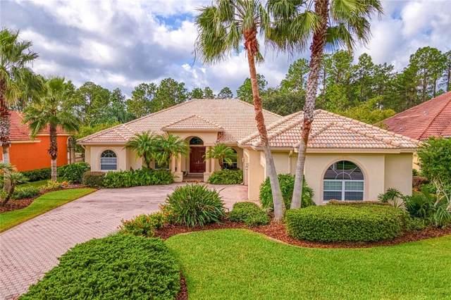 10564 Cory Lake Drive, Tampa, FL 33647 (MLS #T3262050) :: Team Bohannon Keller Williams, Tampa Properties
