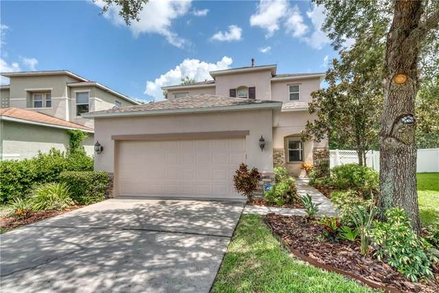 2428 Spring Hollow Loop, Wesley Chapel, FL 33544 (MLS #T3262137) :: Zarghami Group