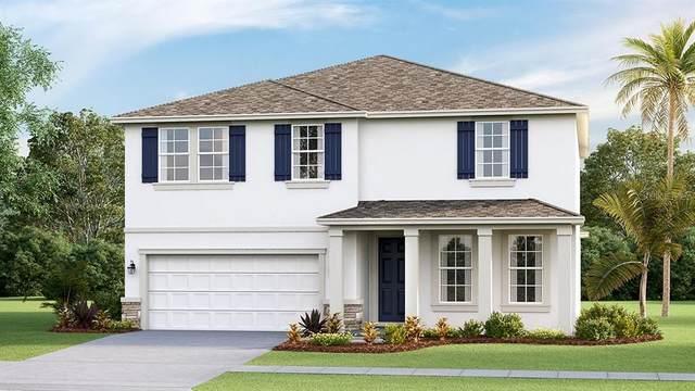 2927 Greenleaf Terrace, Parrish, FL 34219 (MLS #T3262240) :: Team Bohannon Keller Williams, Tampa Properties