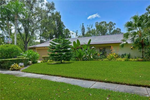 4302 Southpark Drive, Tampa, FL 33624 (MLS #T3262455) :: The Brenda Wade Team
