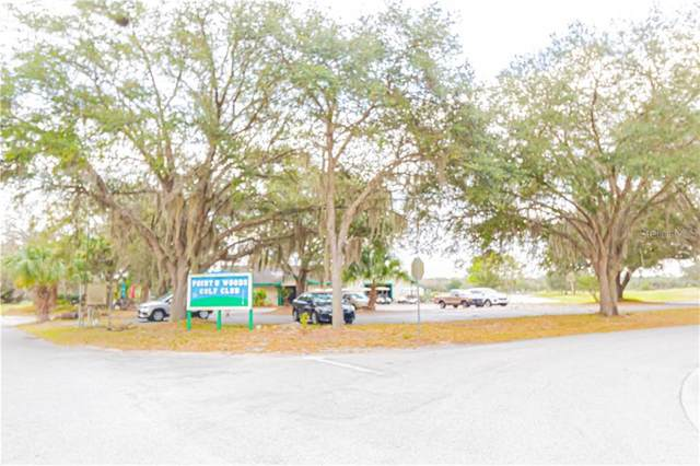 95 S. Golf Harbor Path, Inverness, FL 34450 (MLS #T3262816) :: The Price Group