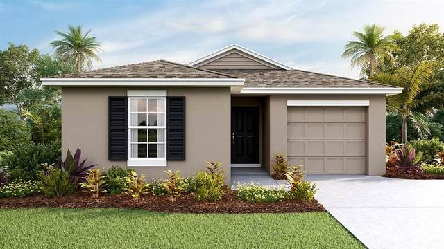 9113 Water Chestnut Drive, Tampa, FL 33637 (MLS #T3262879) :: Alpha Equity Team