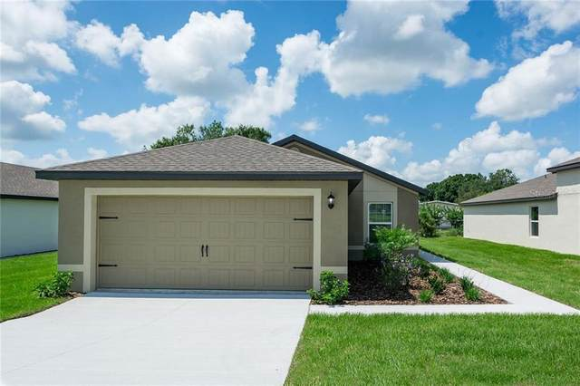 8321 Indian Laurel Lane, Brooksville, FL 34613 (MLS #T3263042) :: Griffin Group